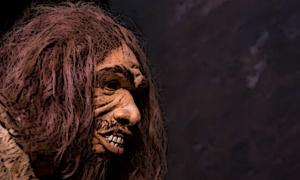 Model of a Neanderthal