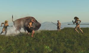Group of Neanderthal hunting a bison.