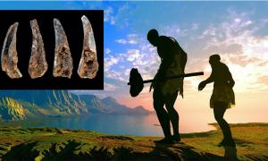 Main: Representation of Neanderthals going fishing. (Kovalenko I / Adobe stock).       Inset: Cracked-open and burnt fragments of pincers of the edible crab (cancer pagurus) found at the Figueira Brava cave, showing evidence of the Neanderthals' seafood diet. (João Zilhão / University of Barcelona)