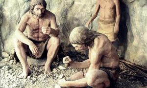 Neanderthals May have been Infected by Diseases carried out of Africa by Humans, say Researchers