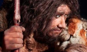 Neanderthal. Source: procy_ab / Adobe Stock