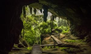 Niah National Park, Where the Caves Continue to Give 40 Thousand Years On