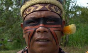 Amazonian native