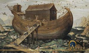 Stairway To Heaven In Noah's Ark