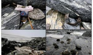 These horse-related finds from Lendbreen indicate the route of a Nordic mountain trail: top left) mandible; top right) horseshoe; bottom left) horse skull; bottom right) horse dung. Source: J.H. Barrett & Glacier Archaeology