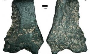 World's Oldest Axe Fragment Found in Australia