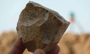 An Oldowan stone tool core freshly excavated at Ain Boucherit, Algeria.