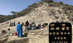 Oldest Tool Use Thrown Back To Two million Years In Oldupai Gorge Find