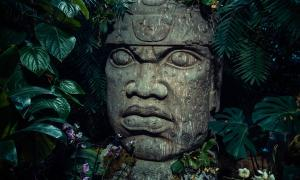 The colossal stone head is a major icon of the culture of the Olmecs
