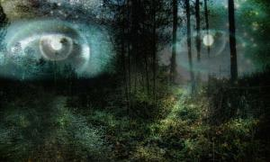 The Origins of the Faeries: Changes in Conscious Perception – Part II