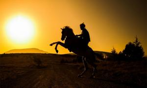 Ottoman Warrior. Credit: ahmetnkececi / Adobe Stock