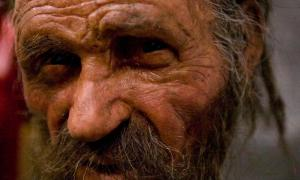 Otzi Speaks: Scientists Reconstruct Voice of 5,300-Year-Old Iceman