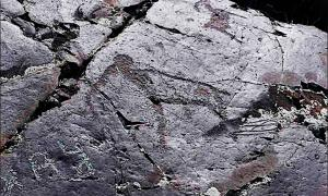 The Paleolithic rock art of the mammoth discovered at Baga-Oygur III in early 2000s. Source: Institute of Archaeology and Ethnography SB RAS / Siberian Times