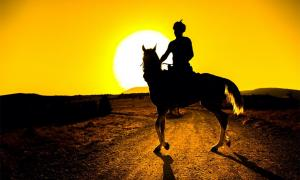 Representation of a horse-mounted Parthian warrior in the sunset.    Source: mehmetcan / Adobe stock