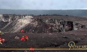 Red flowers apparently left as an offering for the volcano goddess Pele at the edge of the Halema'uma'u Crater in the Kilauea caldera at Volcanoes National Park on the Island of Hawaii
