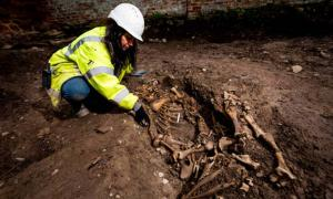 A Pig in a Coffin, A Pregnant Goat, and a Dog That Died in Childbirth: What Were Bizarre Animal Remains Doing in an Anglo-Saxon Church?