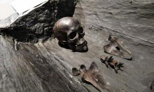 The blackened bones of the Polish 'princess' were discovered in a log on a cliff. Source: Marcin Bielecki/PAP