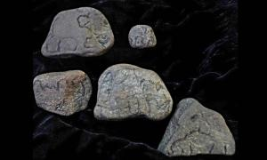 Native American Tiny 'Elephant Stones', Mammoth Effigies, Carvings, Totems From Pennsylvania. Portable rock art such as this has been found globally.