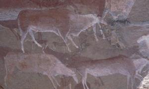 Prehistoric rock art using ochre paint on a cave wall in Drakensberg, South Africa
