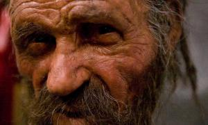 Reconstruction of the face of Ötzi