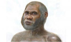 Artist's reconstruction of a Red Deer Cave man.