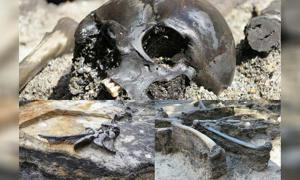 Remains of 82 individuals have be recovered from the Alken Enge site.
