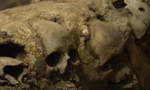 Section of skulls at the tzompantli found near the Templo Mayor, Mexico City