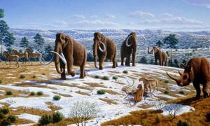 Restoration of a group in late Pleistocene northern Spain, by Mauricio Antón