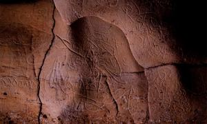 Paleolithic rock art found on walls of Font Major Cave near L'Espluga de Francolí        Source: Generalitat de Catalunya