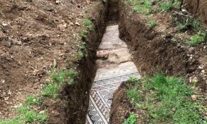 Roman mosaic floor unearthed in Negrar di Valpolicella, Italy .           Source: Comune di Negrar di Valpolicella
