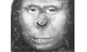 Zana, Russian Ape Woman