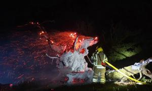 The sacred Whiteleaved Oak near Ledbury has been destroyed by fire. Source: Ledbury Fire Station / Hereford Times