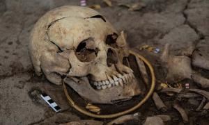 The skull of the  'golden man' found in the Saka burial mound.