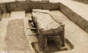 General view of the coffin found at Sanauli
