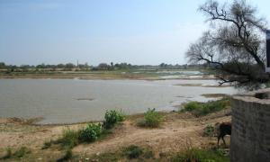 Bed of Ghaggar River near Hanumangarh. Researchers claim this is the ancient Saraswati River. Source: Bharat Jhunjhunwala / CC BY-SA 2.0.