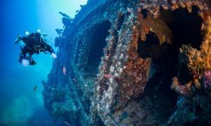 Representation of diver inspecting a shipwreck.         Source: Wojciech / Adobe stock