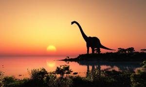 Days were shorter during the time of the dinosaurs.  Source: Kovalenko I / Adobe Stock