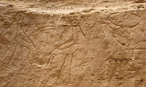 Significant Inscriptions Found in Egypt: From the Earliest Huge Hieroglyphs to Greek-Roman Period Graffiti