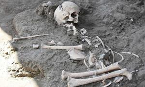 The child skeleton recently discovered at Pompeii.