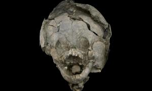 Infant discovered at Salango, Ecuador, with a skull helmet. Source: Twitter.