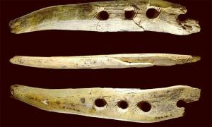 Stone-Age mammoth bone cordage tool found at Hohle Fels cave in Germany that scientists now recognise as a rope-making tool from 40,000 years ago.                     Source: University of Tübingen