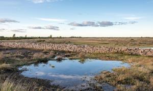 The Historic Limestone Landscape of Stora Alvaret