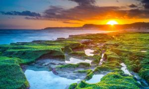 Sunrise at Laomei Green Reef on the coast north of Taipei, Taiwan, where researchers found scant evidence of early human impact on animal extinction.