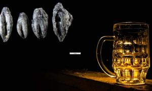 Beer. (CC0) Insert: Carbonized germinated grains found at Uppåkra, Sweden.