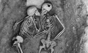 Hansanlu Lovers skeletons close up of torsos and skulls