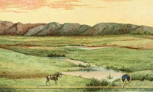 Matabele land and the Victoria Falls: a naturalist's wanderings in the interior of South Africa, from the letters and journals of the late Frank Oates / edited by C.G. Oates. 1881