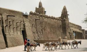 Team of eight unbridled donkeys walk past a mud mosque laden with a load of gravel.