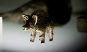 Bronze swine figurine found at Titelberg.      Source: Wuyts, A / CC BY 2.0