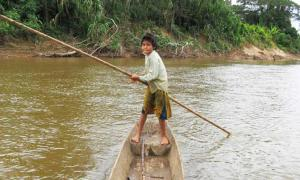 Bolivian Tsimane Amazonians Have the Best Hearts in the World