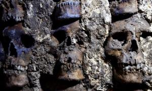 Detail of skulls on the tzompantli (skull rack) found under Mexico City